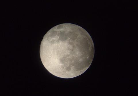 望月-Wikipedia