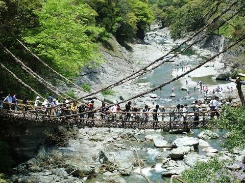 祖谷渓かずら橋