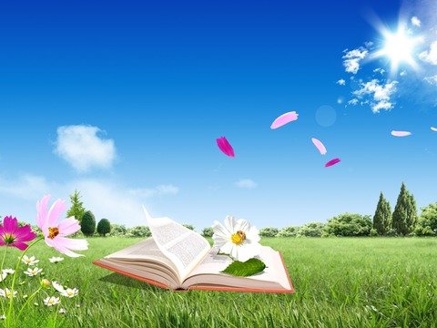 Reading-a-book-on-green-meadow-relaxing-summer-time