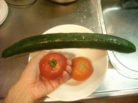 巨大キュウリとトマト