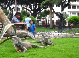 イグアナ公園