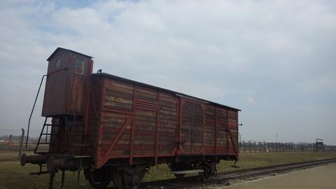 IMGP3203