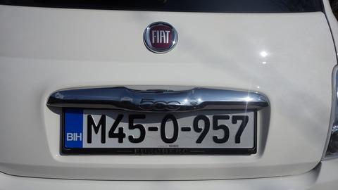 IMGP4981