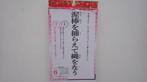 IMGP3423