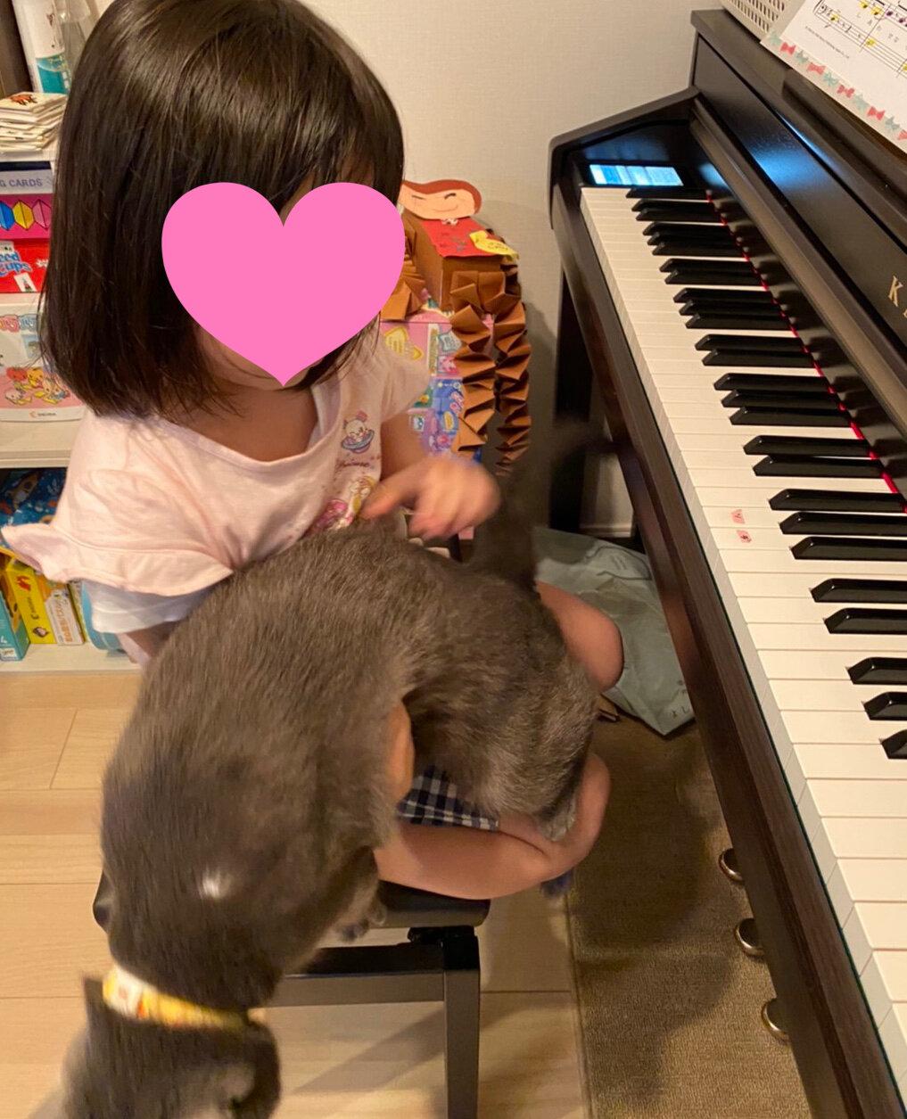 ピアノ 光輝
