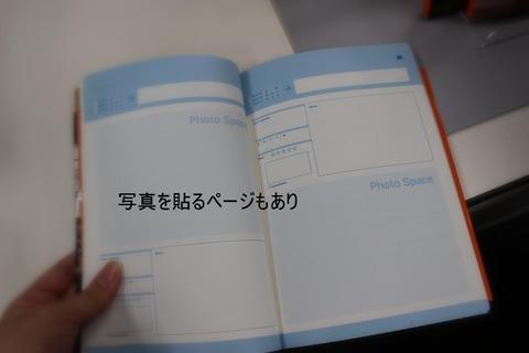 IMG_3706