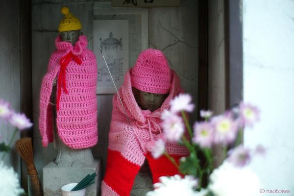 pink cloak