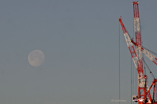 morningmoon