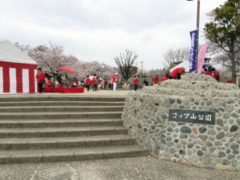 sakuramatsuri (6)