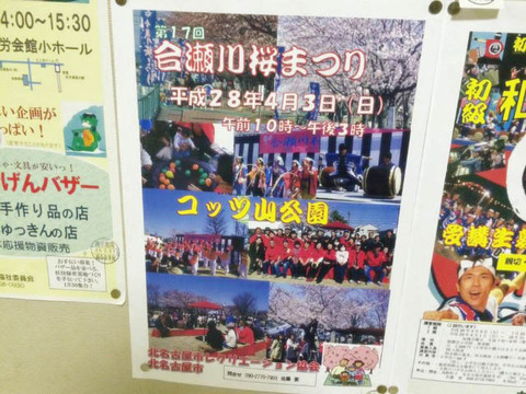 sakuramatsuri (1)