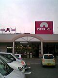 aoki-naruko