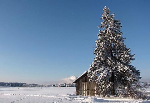 Winter-landscape-Lappeenranta-Finland