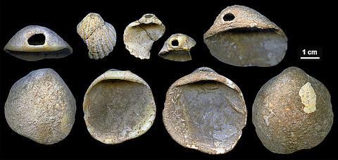 f-neanderthals-b-20180224