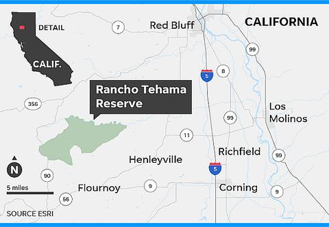 636462713765940370-111417-CA-Rancho-Tehama-shooting-Online