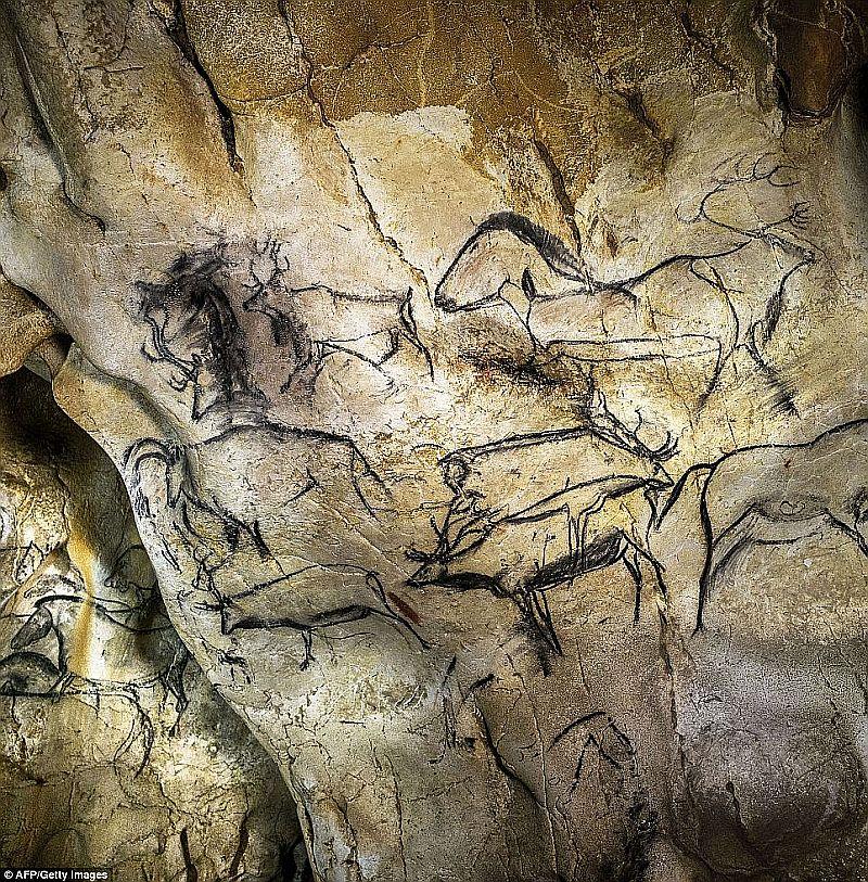 ショーヴェ洞窟の画像 p1_35
