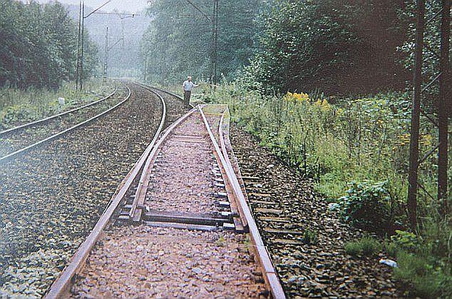 列車 ナチス 黄金 【都市伝説?】ポーランドにあるといわれるナチスの黄金列車とは?調査は?