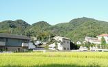 9立花山4