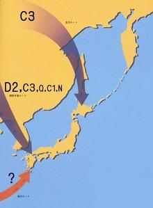 日本人−旧石器人の流入Y