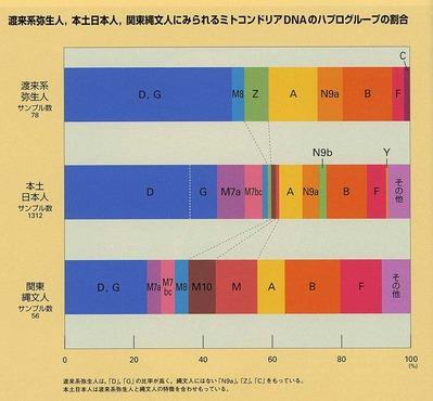 日本人−弥生人ハプログループ