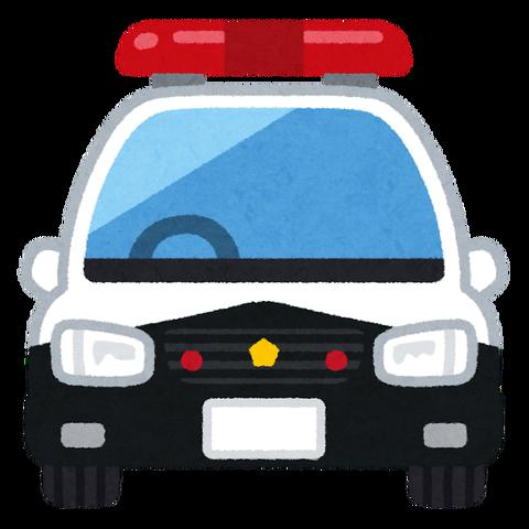 car_patocar_front