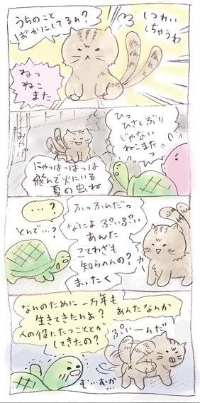 ぷいぷい6