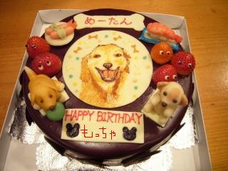 めーたんケーキ