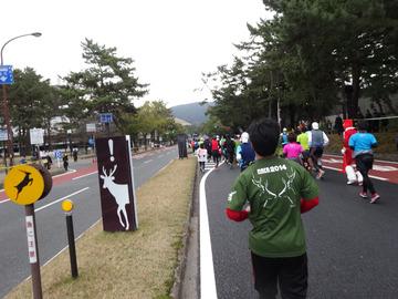 奈良マラソン2014-60