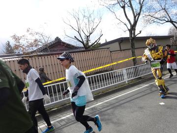 奈良マラソン2014-2-25