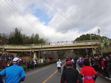 奈良マラソン2014-5