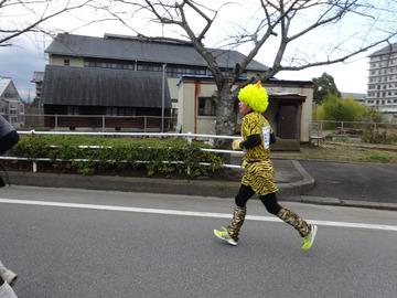 奈良マラソン2014-2-35