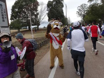 奈良マラソン2014-59