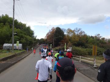 奈良マラソン2014-40