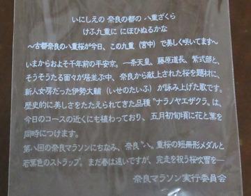 奈良マラソン2017-4