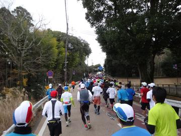 奈良マラソン2014-57