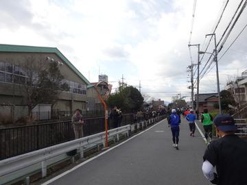奈良マラソン2014-8