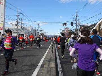 奈良マラソン2014-63