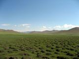 草原ツアー草原にて2