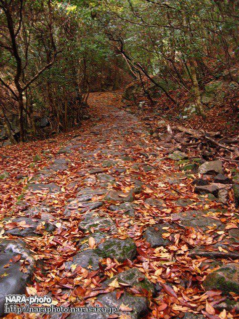 滝坂の道の紅葉1