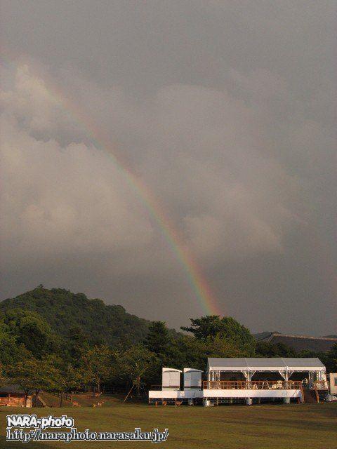 春日野園地から見た虹1