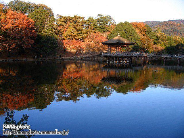 鷺池(浮見堂)2