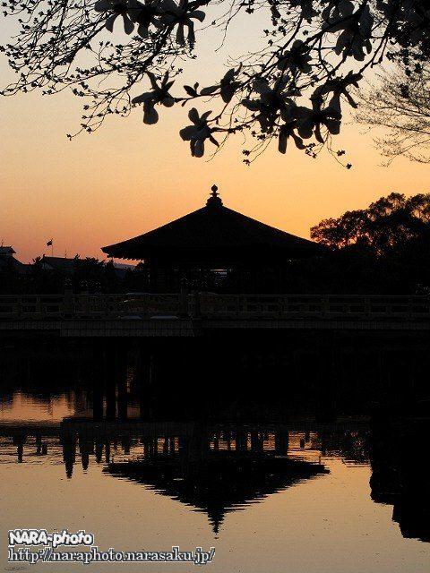奈良公園・鷺池・浮見堂2