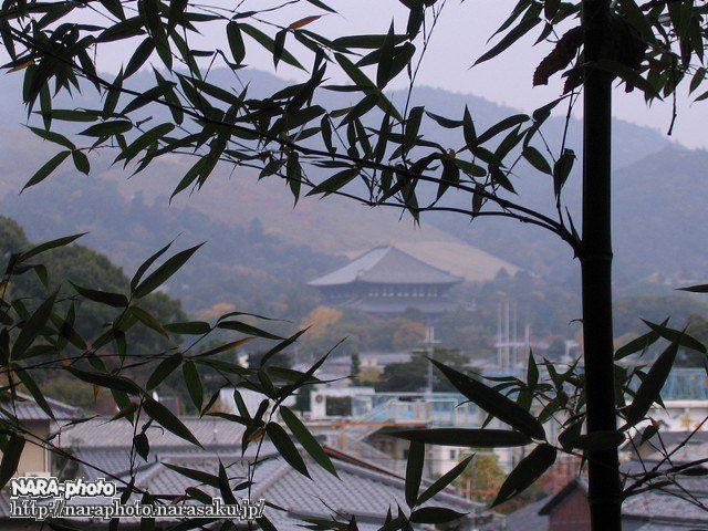 西安の森から見た東大寺