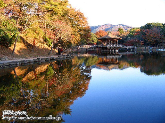 鷺池(浮見堂)1