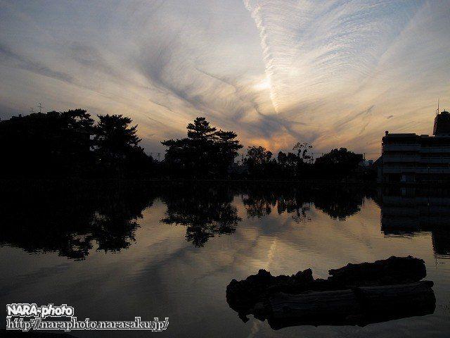 猿沢池の夕暮れ1