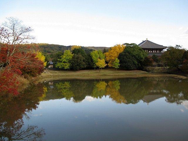 大仏池の紅葉1