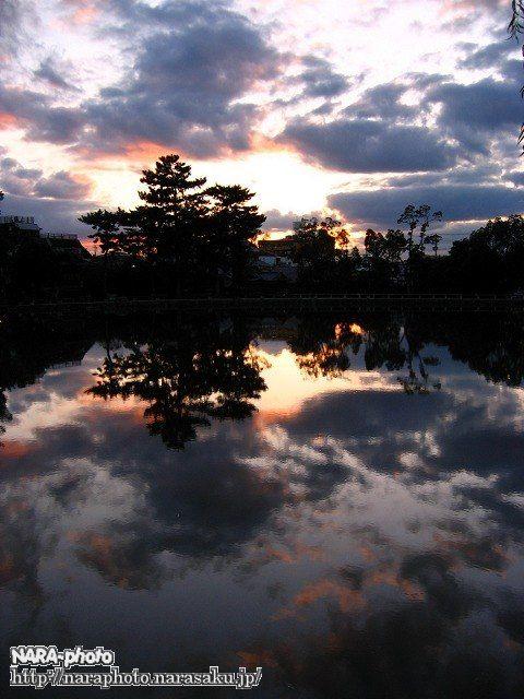 猿沢池の夕暮れ3