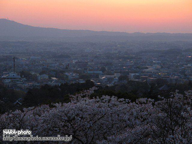 桜・奈良市街地・赤く染まる空