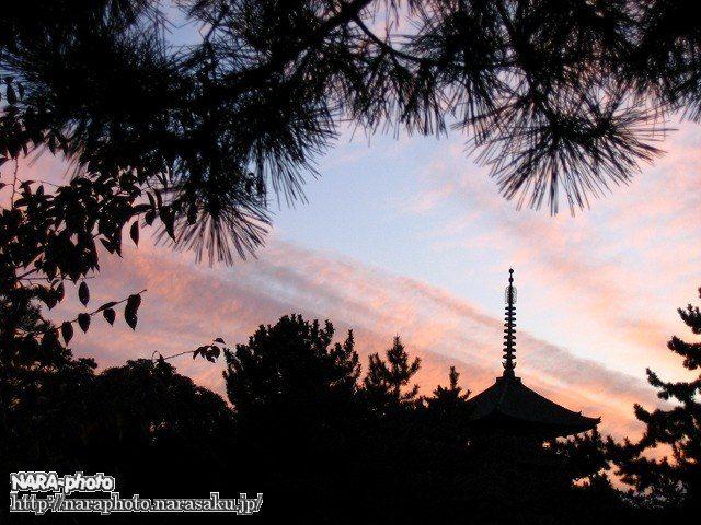 夕暮れの興福寺