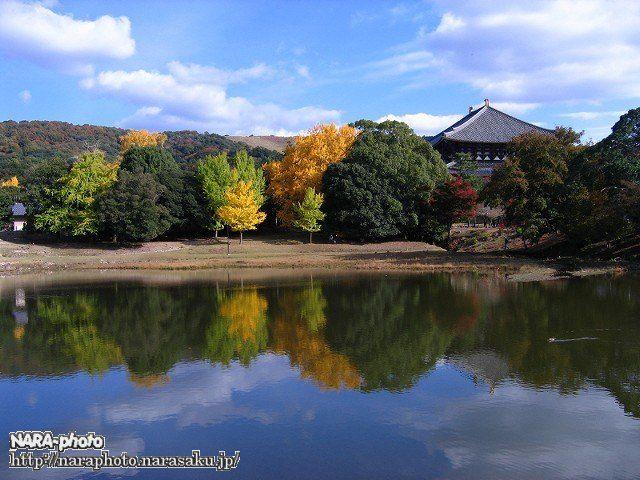 東大寺の紅葉1