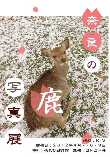 奈良の鹿写真展